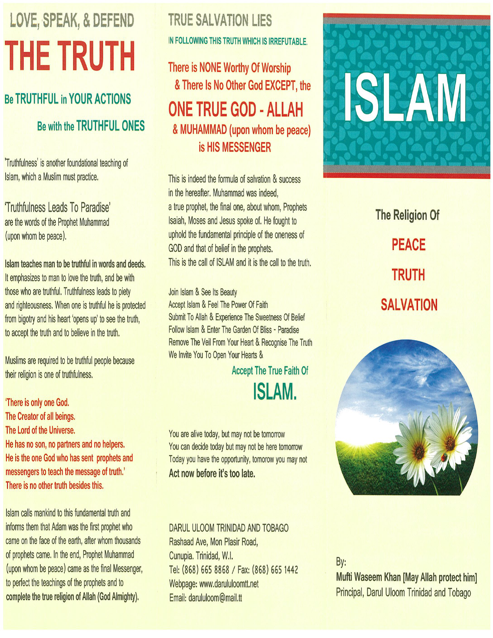 Islam The Religion of Peace, Truth and Salvation (Palm Flex)