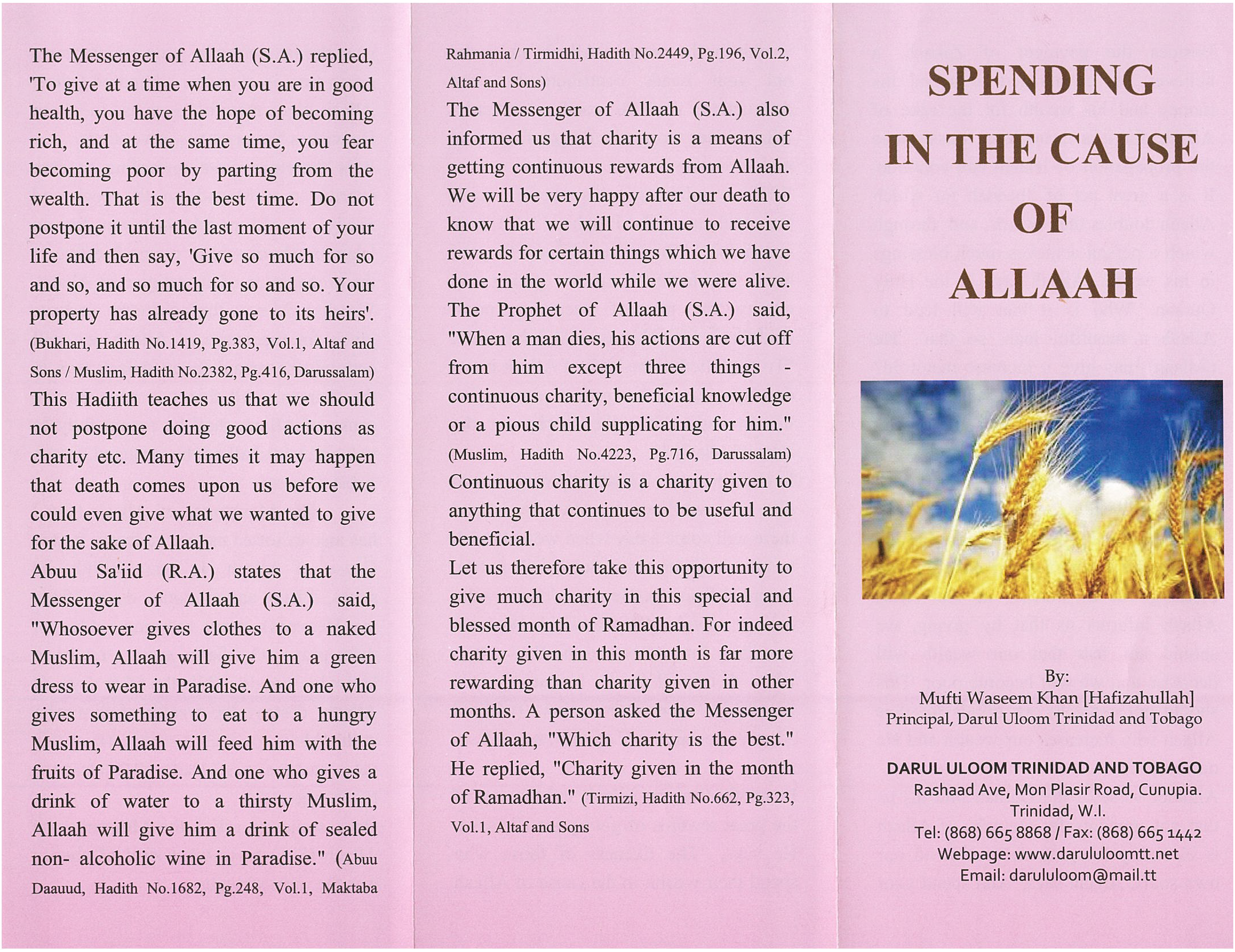 Spending In The Cause of Allah (Palm Flex)